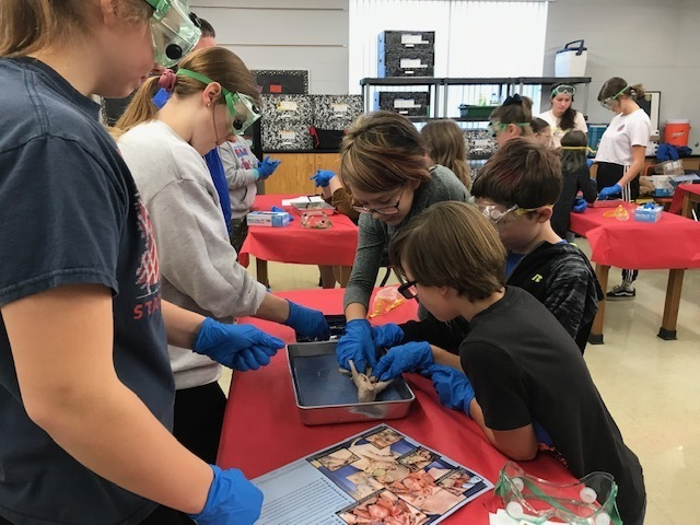 Dissection lab